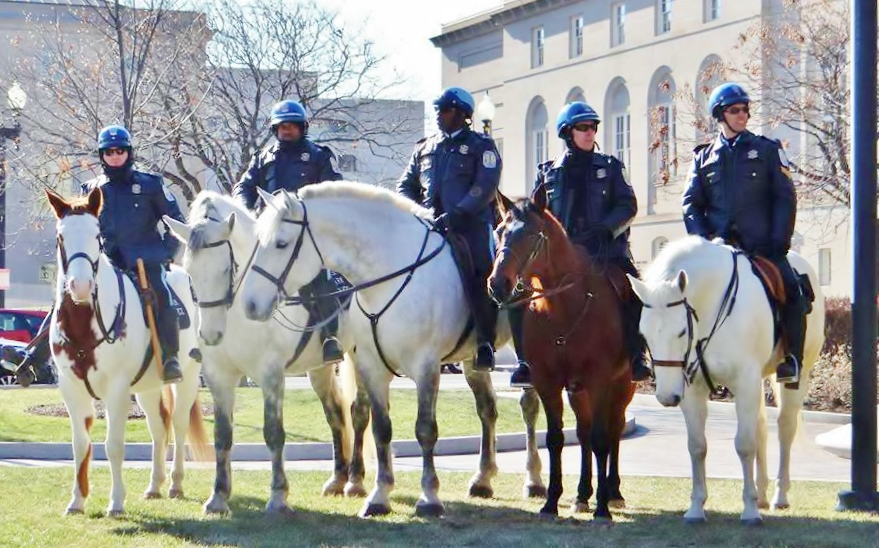 HMP units at Sea of Blue March January 17, 2015