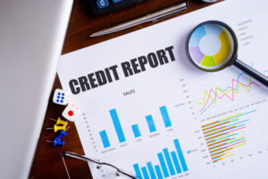 review credit report