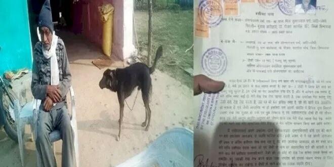 बेटे-बेटियों की जगह कुत्ते के नाम कर दी जायदाद, वसीहत में बनाया प्रॉपर्टी का मालिक, जानें क्यों? समस्तीपुर Town