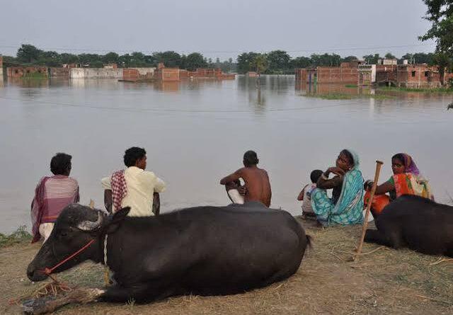 समस्तीपुर : गंगा व बाया नदी के जलस्तर में लगातार हो रही बृद्धि, बाढ़ की विभीषिका से ऊंचे स्थान तलाश रहे लोग समस्तीपुर Town