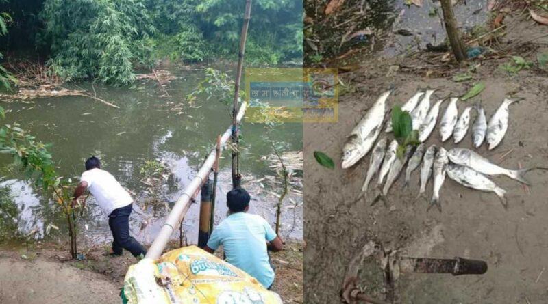 तालाब में जहर देकर मछलियों को मारा, पीड़ित ने थाने में दो लोगों के खिलाफ की नामजद प्राथमिकी समस्तीपुर Town