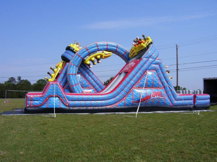 The Wild One Obstacle Side View
