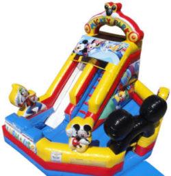 Mickey Junior Slide