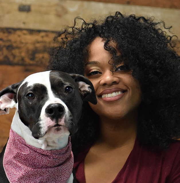work with dogs team member with black and white pitty dog