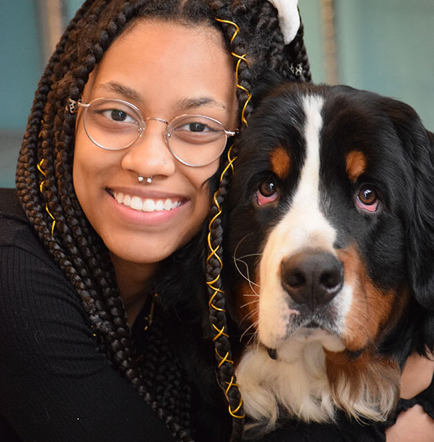 work with dogs team member with bernese mountain dog