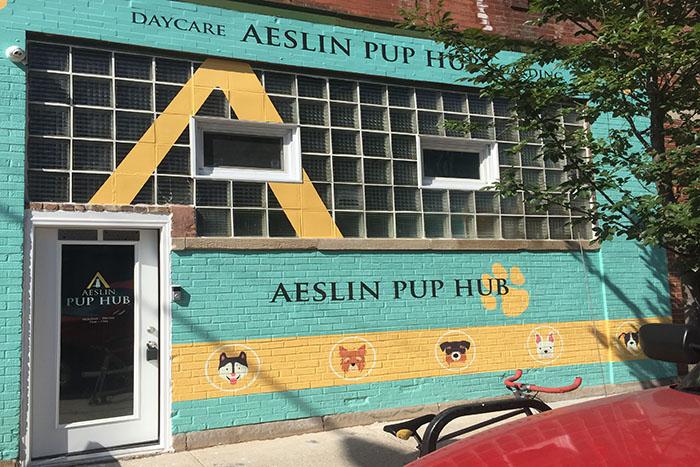 bucktown dog daycare storefront