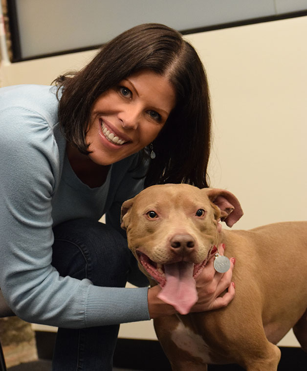 owner with pitty mix portrait