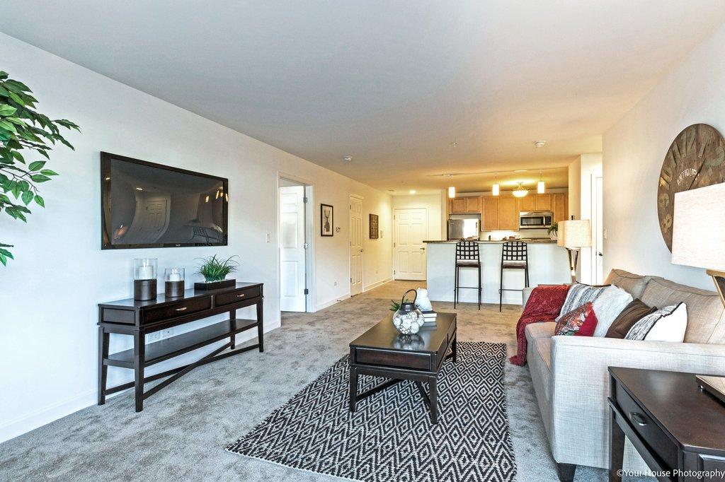 Living Room, Reva Bay Lane, Fox Lake, IL