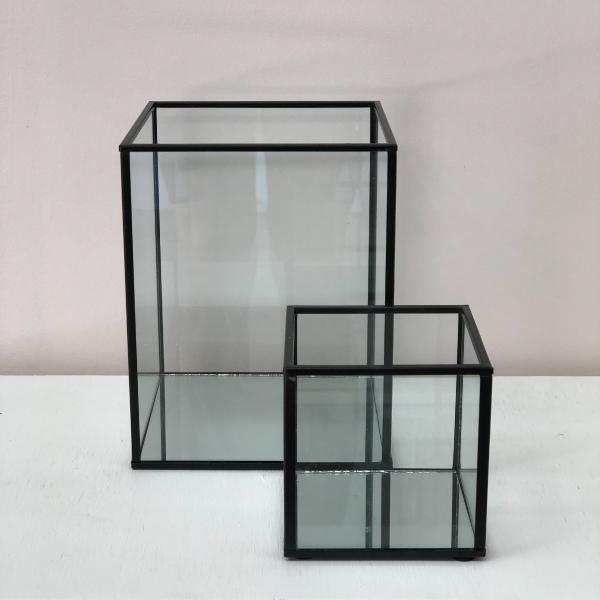 Black-Terrariums