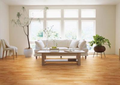 modern-hardwood-floors