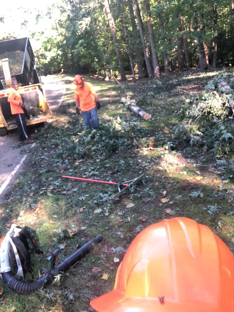 Clean-up crew getting it done