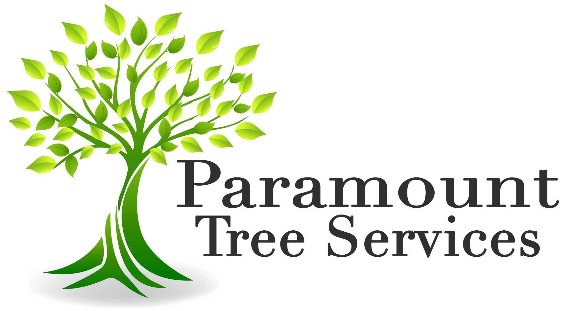paramount-tree-logo-2-scaled-e1597517461988