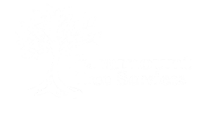 paramount-tree-logo-bw-1-e1597780460926