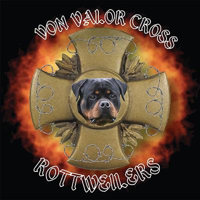 Von Valor Cross Rottweilers