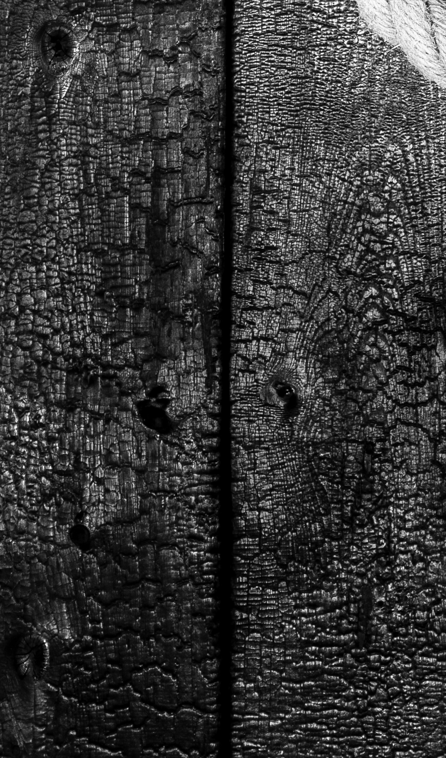 charred wood and rope vertical