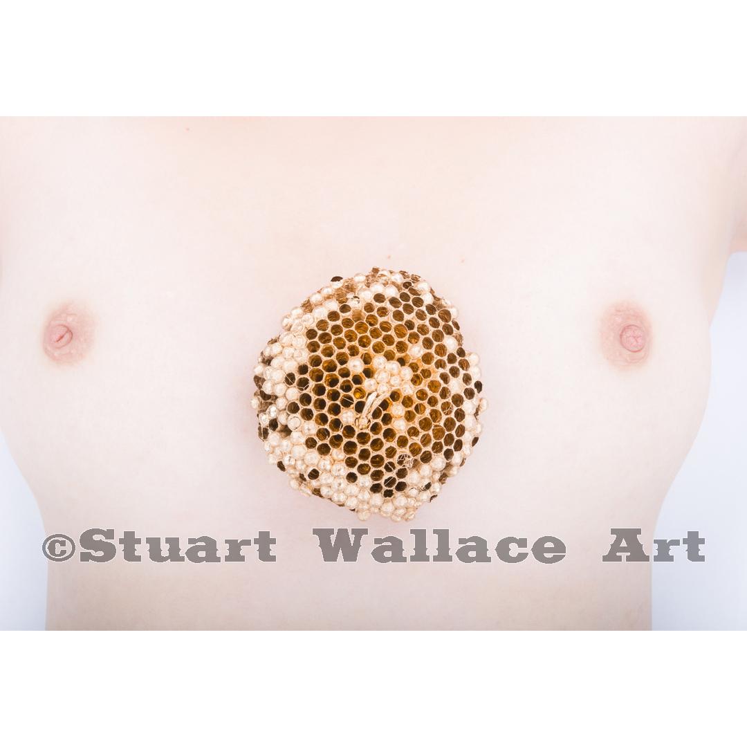 41 WM 923: Golden Wasp Nest On Woman's Chest