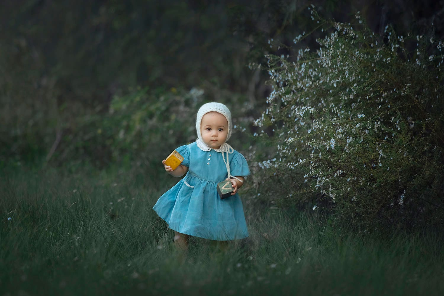 Baby girl holding blocks wearing blue dress and bonnet by Annie Whitaker Photography