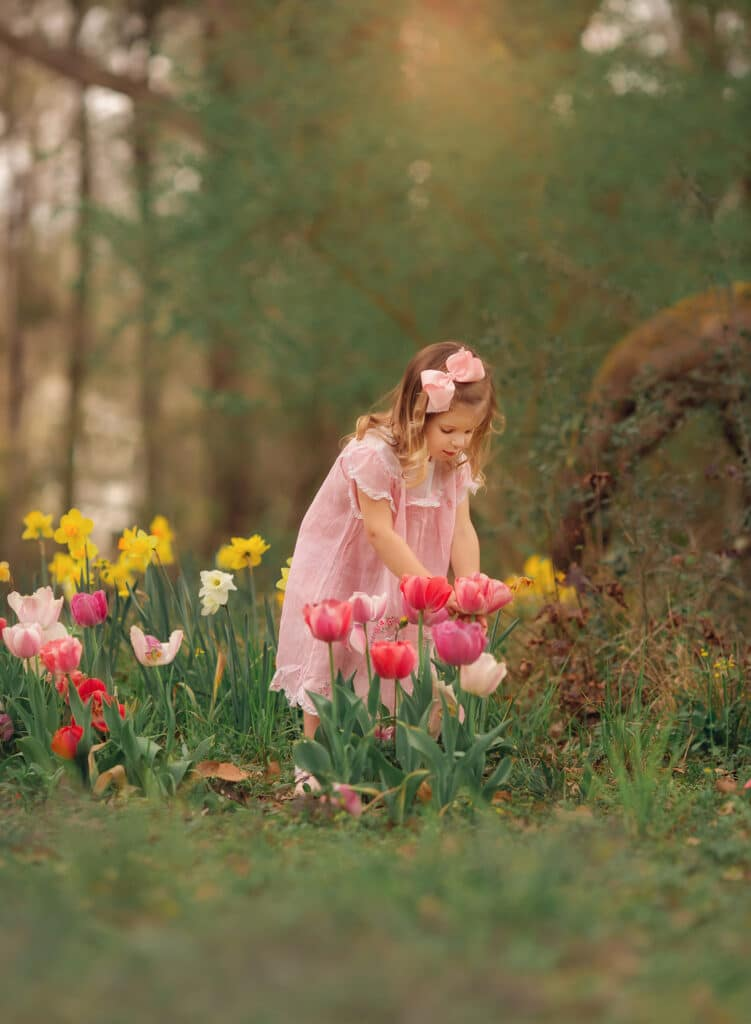 Adorable 2 year old picking tulips