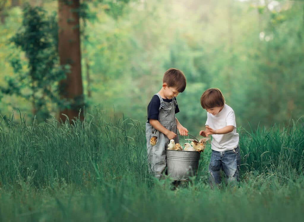 brothers with baby chicks in basket