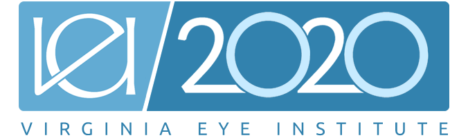 VEI 2020 Logo – 1000×200 (with Text)
