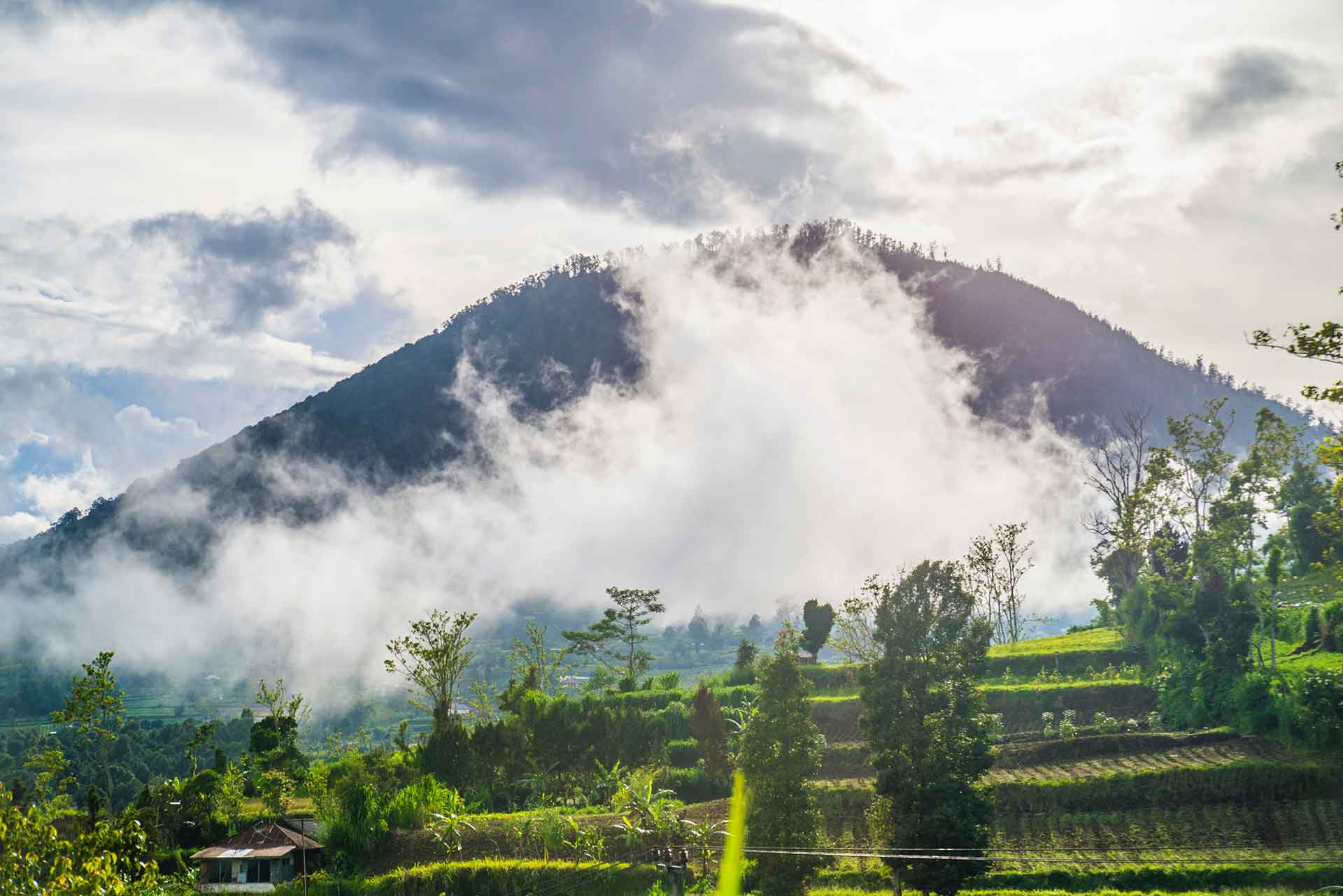 Balinese Massage Heaven