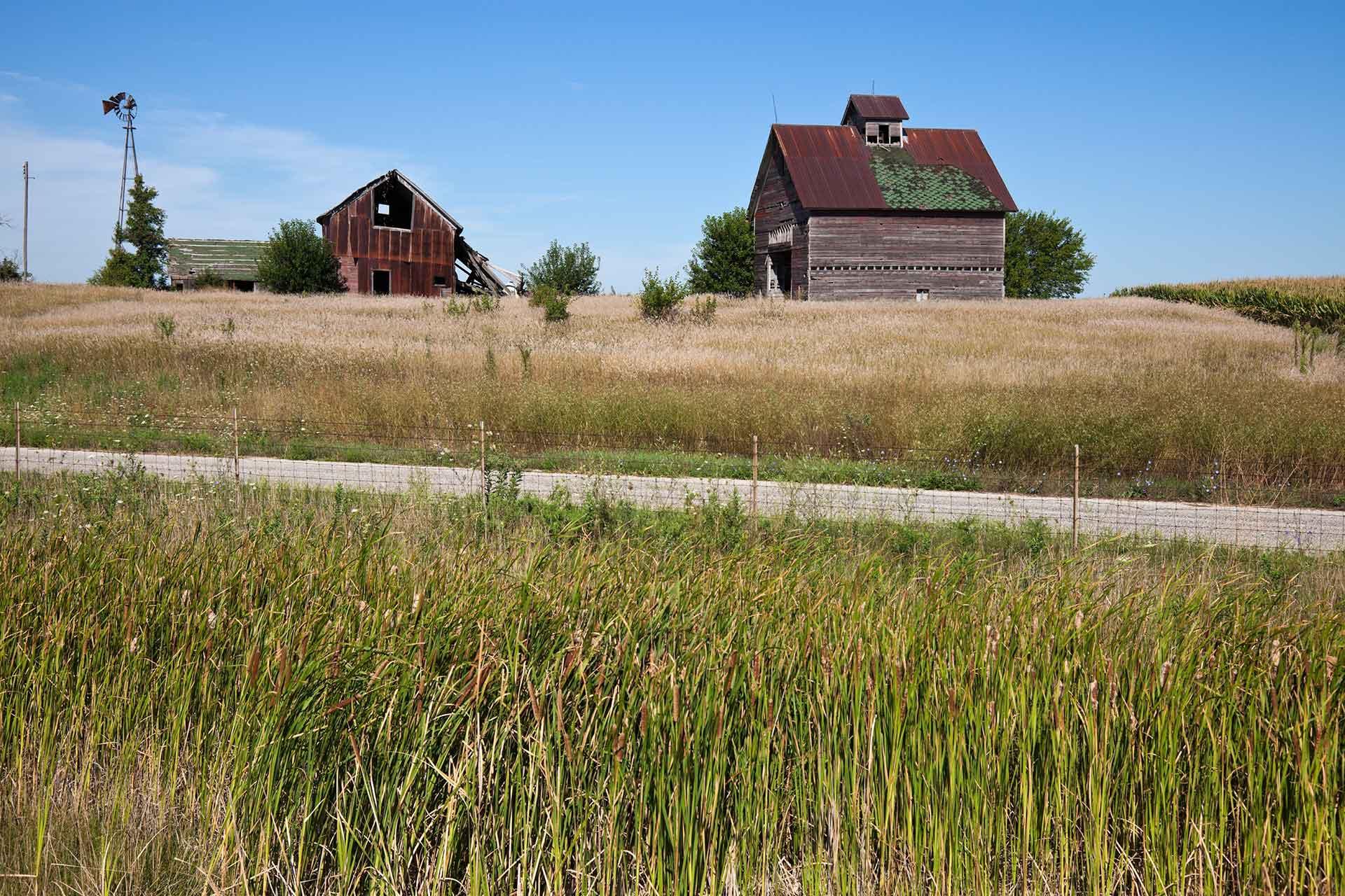 Iowa – Where the Tall Corn Grows