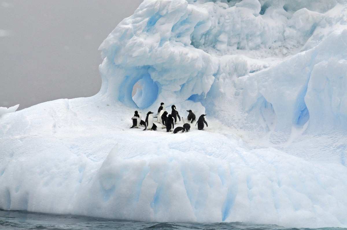 The Ice – Antarctica