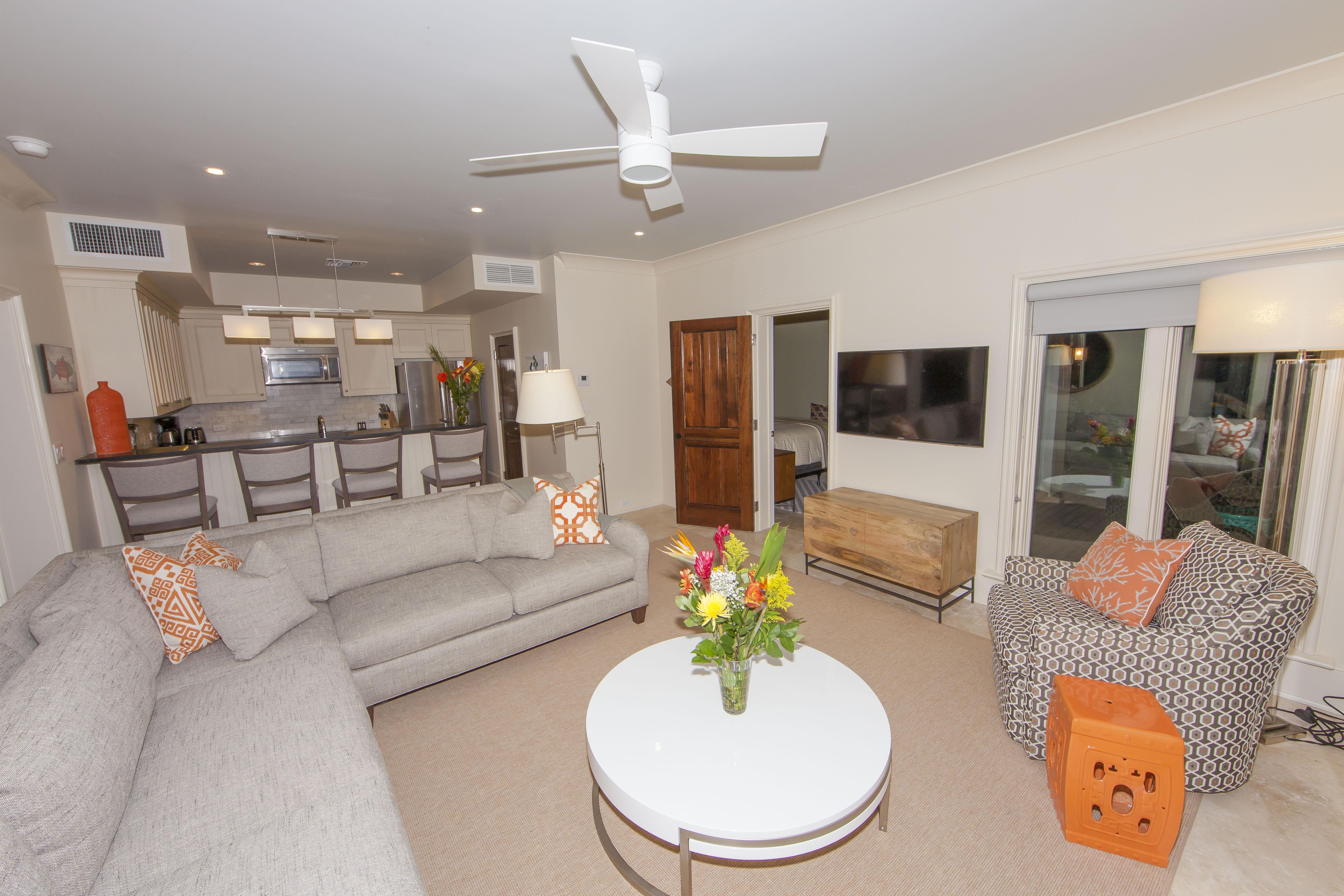 Lower Living Room/Kitchen