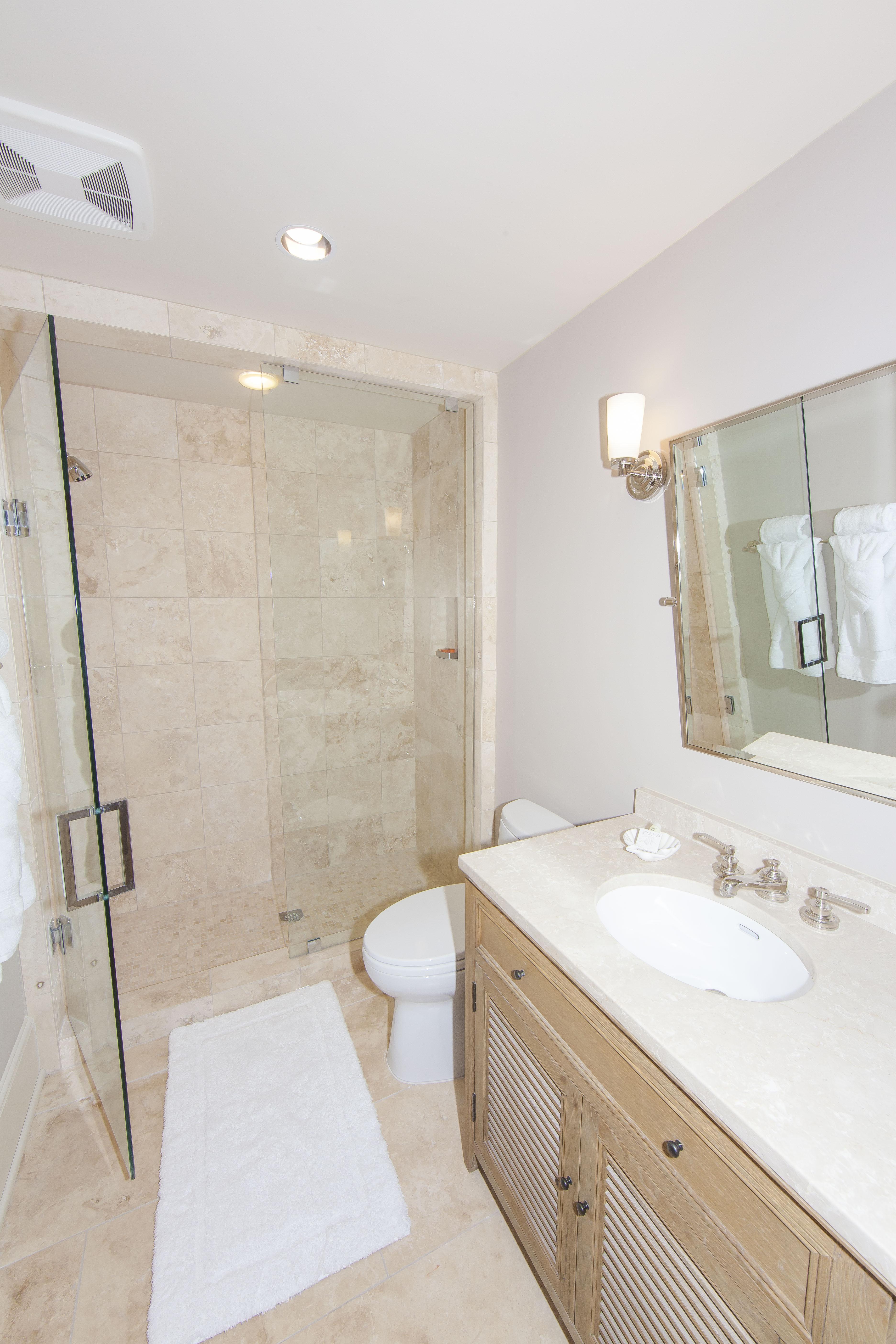 Lower Level Bathroom 1