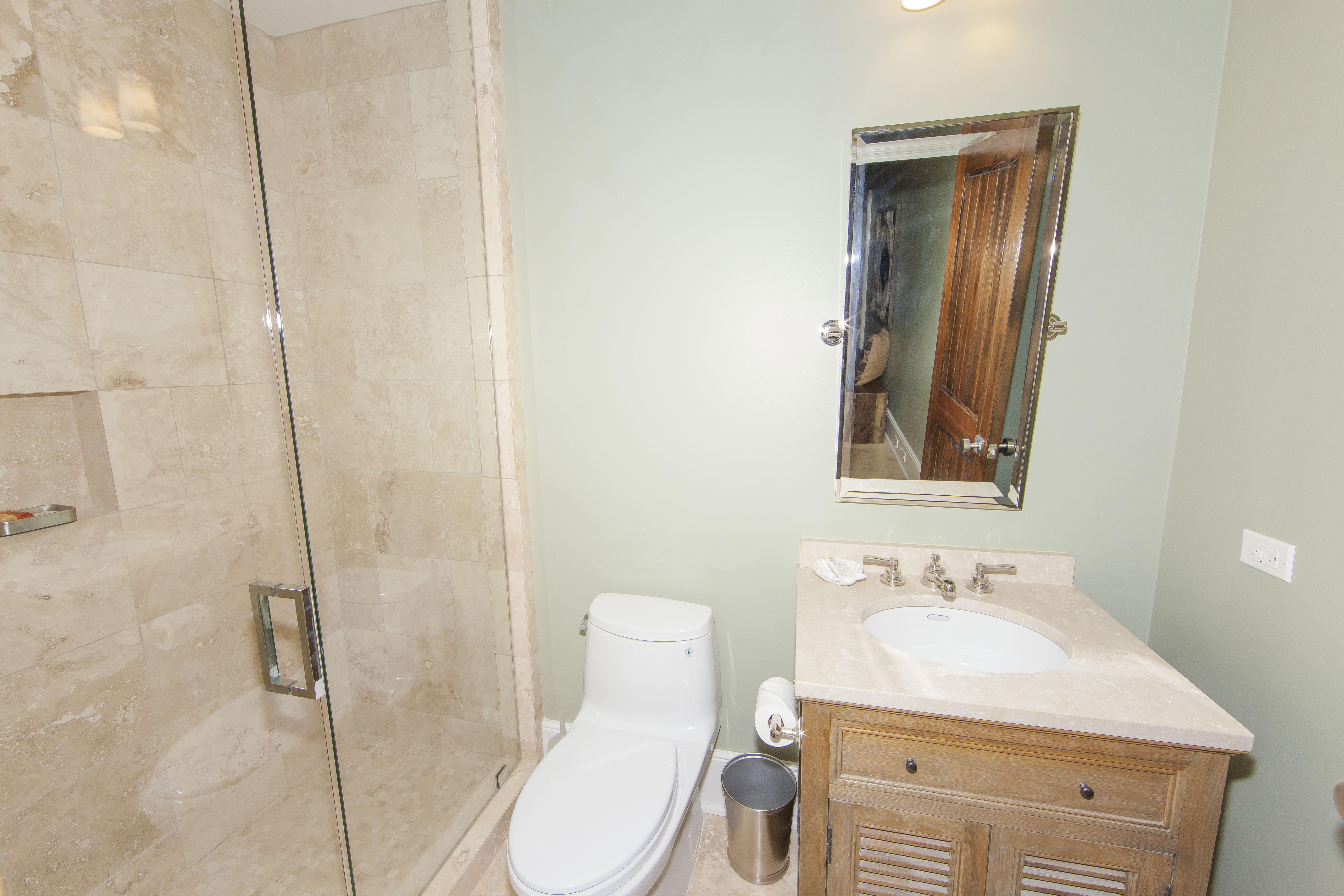 Lower Level Bathroom 2