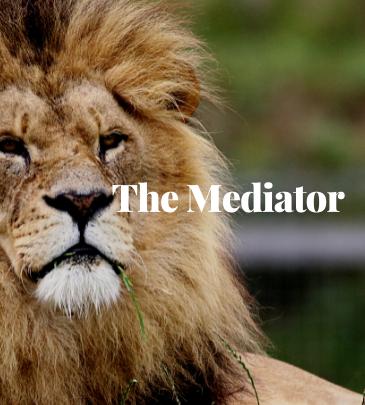 Jesus Christ the Mediator
