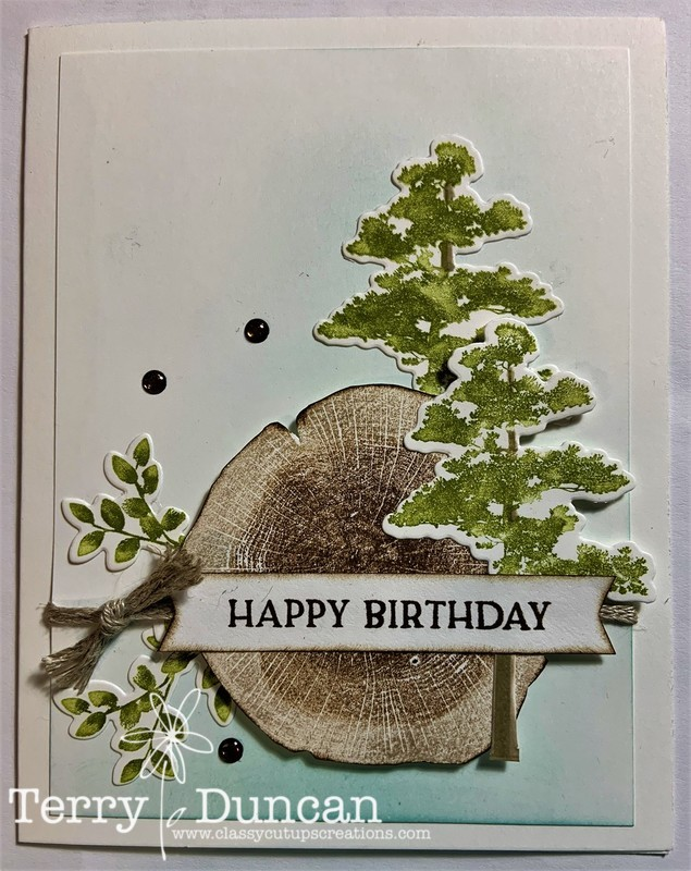 Rooted in Nature Stamp Set