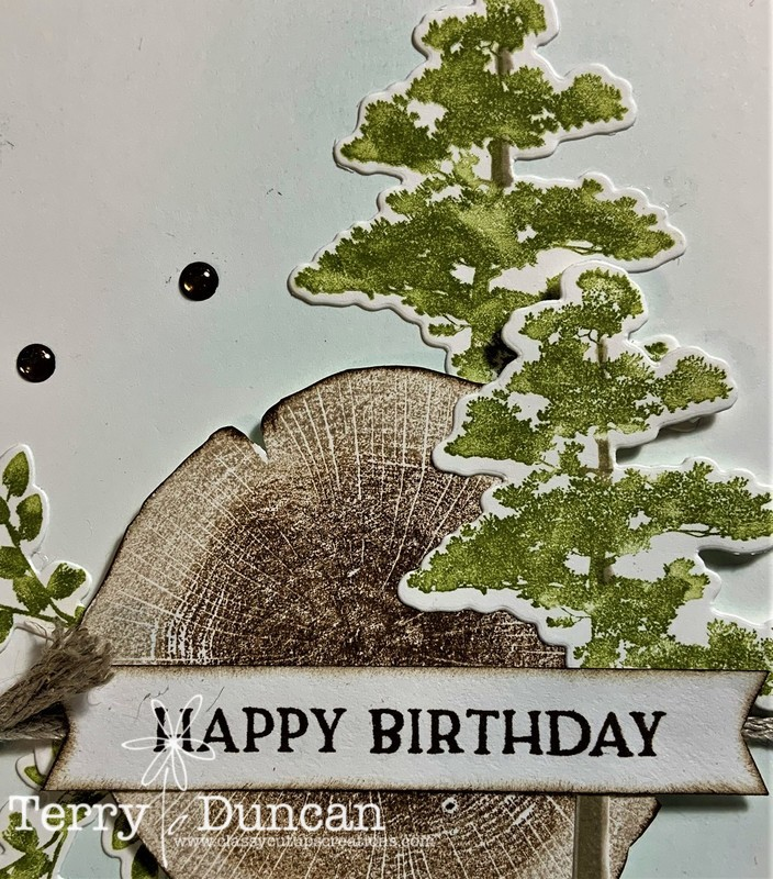 Handmade Card With the Rooted in Nature Stamp Set