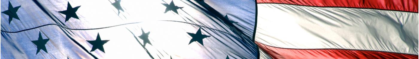 flag banner3