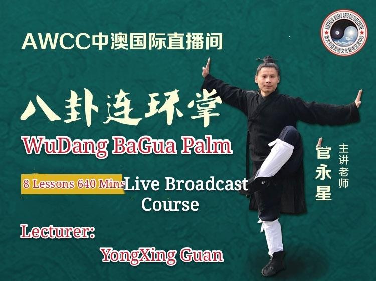 Wu dang  Bagua  Palm <br> 8 lessons: 640mins<br>Elite  level