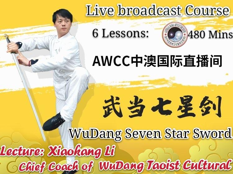 WuDang Seven Star Sword <br> 6 lessons 480 minutes<br>Elite class