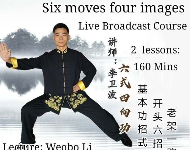 Six moves and four images <br>2 lessons-160 mins<br>Beginner course