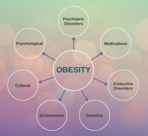 Obesity Causes