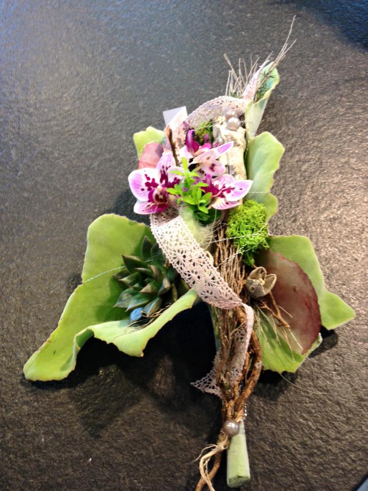 Kalanchoeblätter und Orchideen