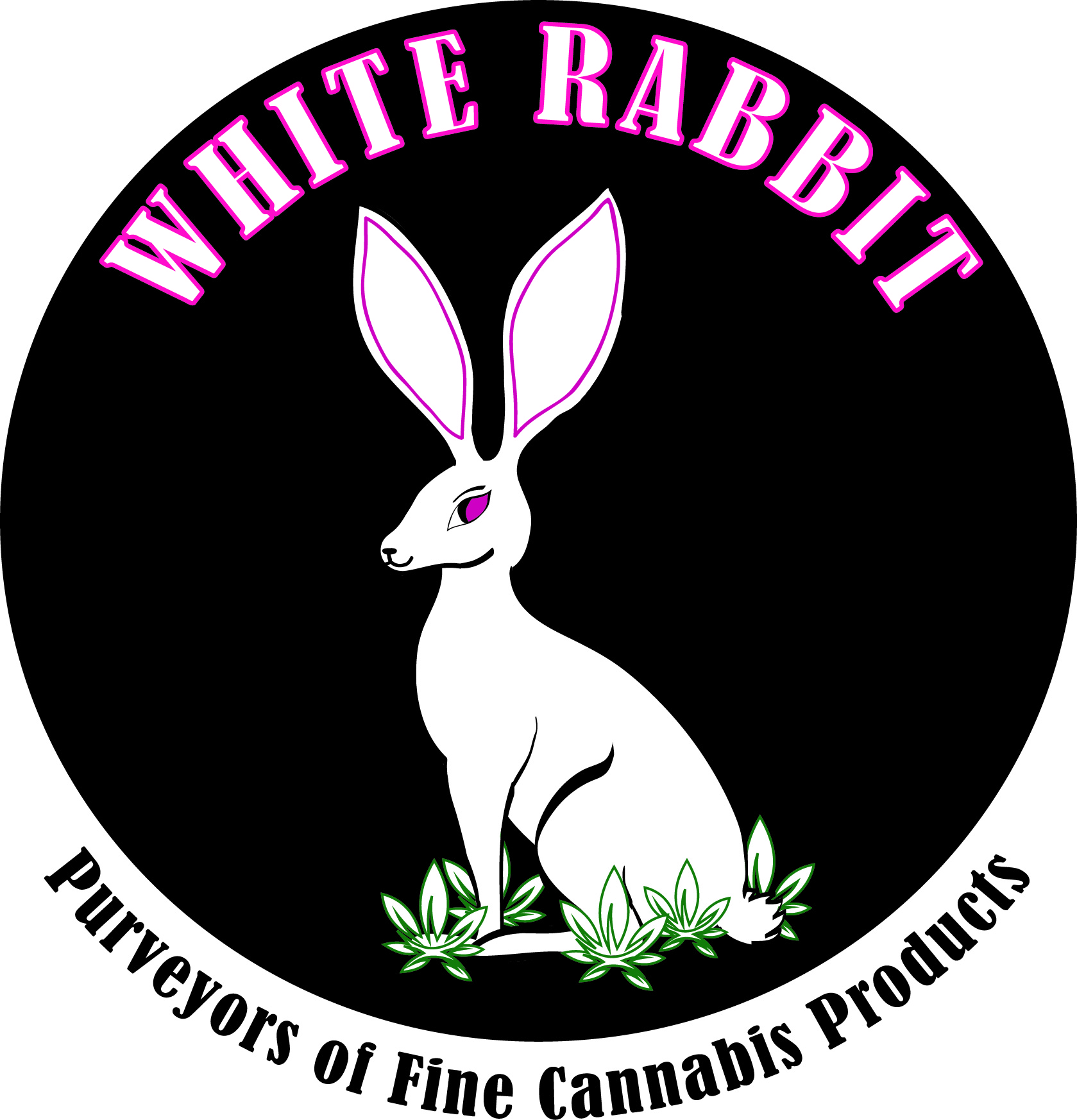 White Rabbit Cannabis Franchise Opportunity