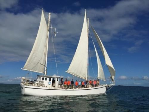 Ciganka under sail by Bruce 4 small