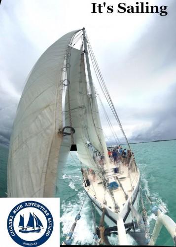 Ciganka under full sail with logo