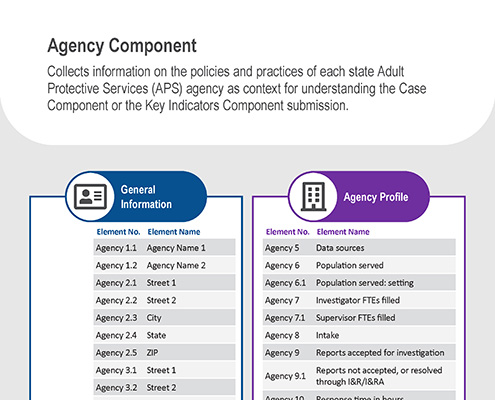 """A screenshot of the handout called, """"NAMRS Agency Component""""."""