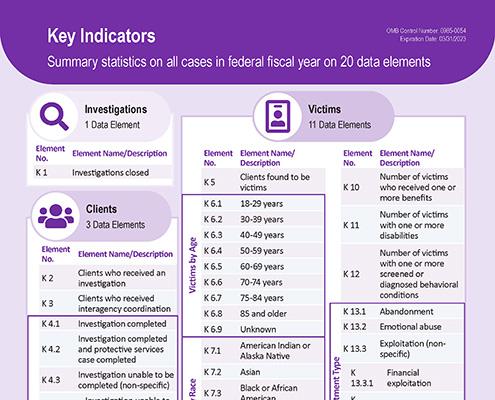 "A screenshot of the handout called, ""NAMRS Key Indicators""."
