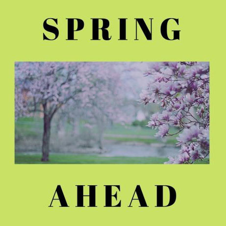 Candy Campbell Blog - Spring Ahead