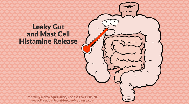 THE HIDDEN OBSTACLE TO YOUR RECOVERY FROM MERCURY POISONING: LEAKY GUT AND MAST CELL HISTAMINE RELEASE