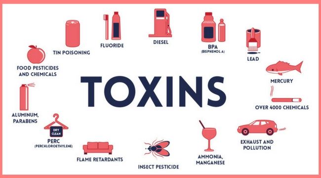 TOP 12 WAYS TO PREVENT EXPOSURE TO MERCURY, OTHER METALS AND ENVIRONMENTAL TOXINS