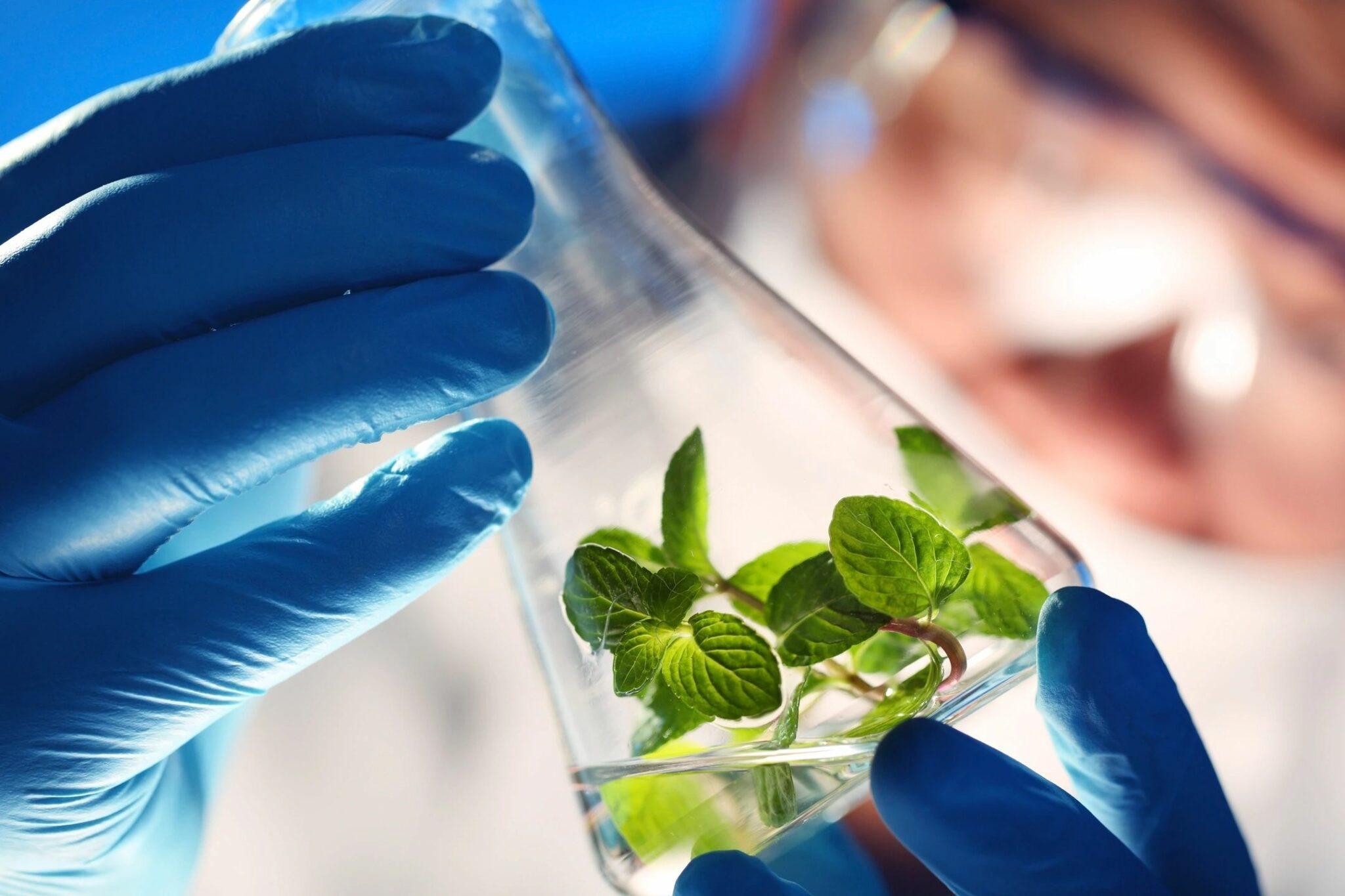 Cultivation Process Engineers - Integratedbio