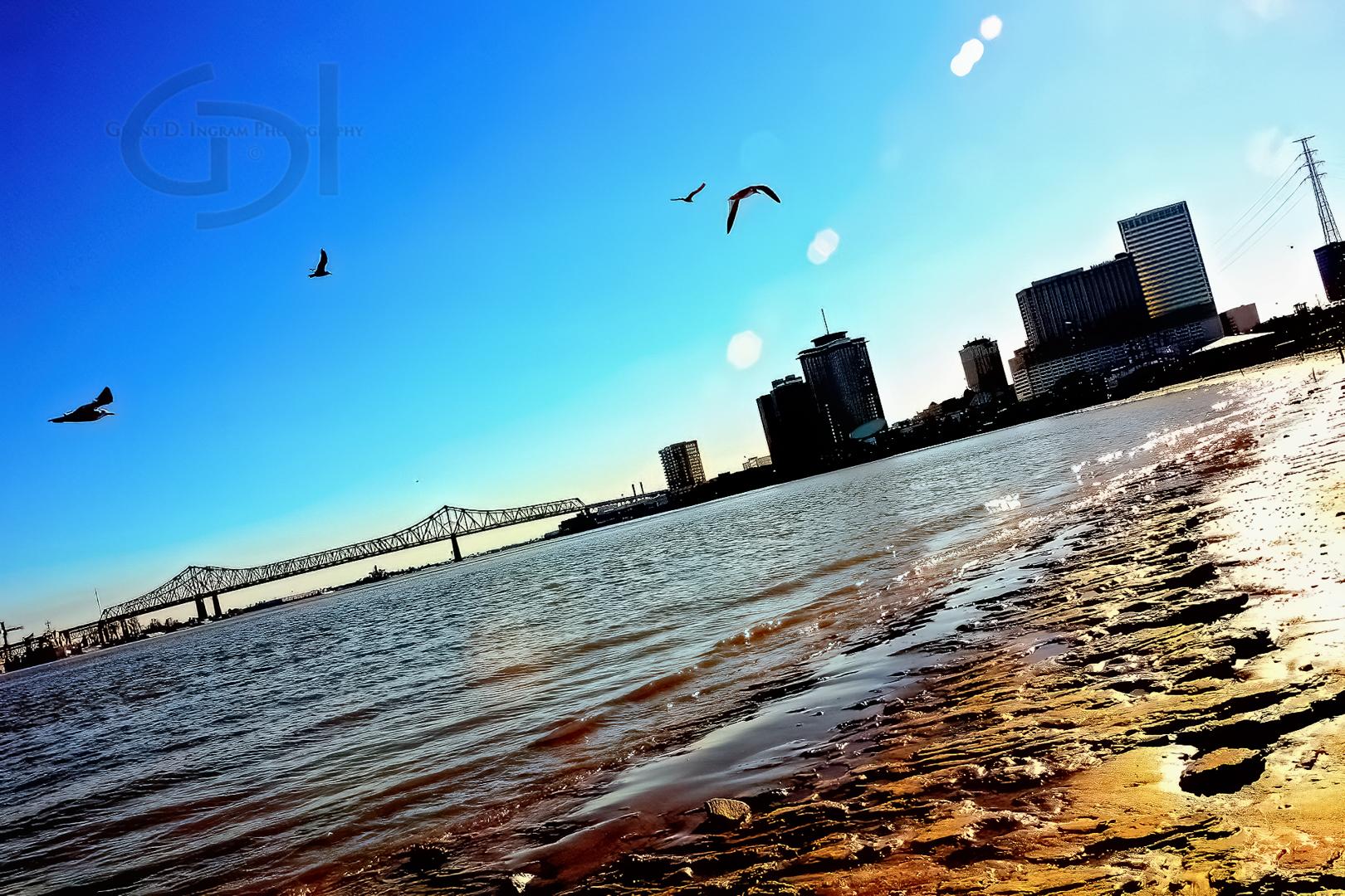 Riverbank Birdflap-©