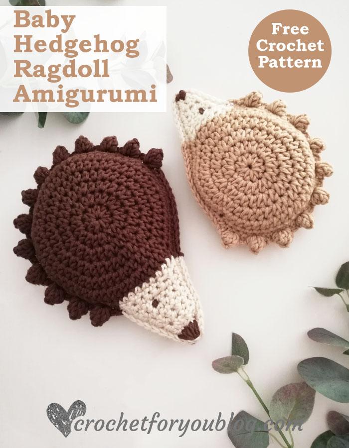 Baby Hedgehog Ragdoll